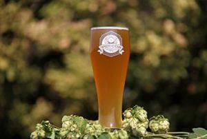 Бархатное пиво Первореченский пивоваренный завод